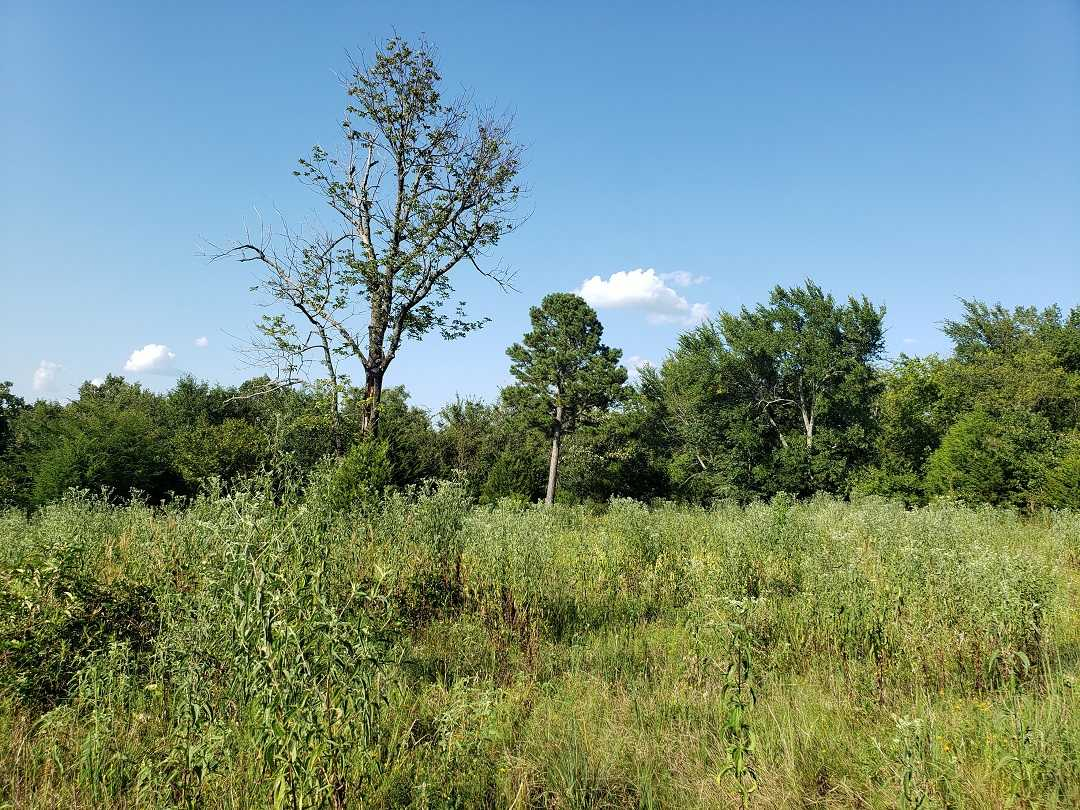 hunting land, deer OK, land OK, mixed ranch, ponds, utilities | Holsten Ln Wilburton, OK 74578 30
