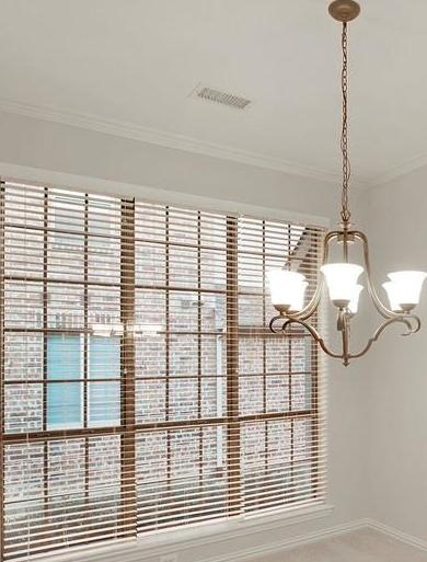 Sold Property   927 Sloan Drive Allen, Texas 75013 6