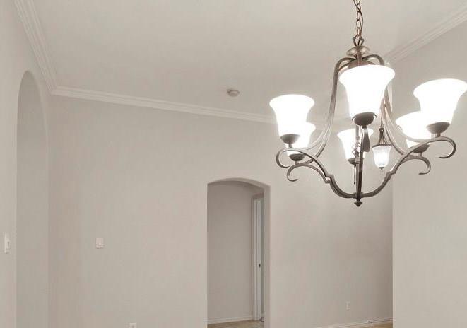 Sold Property   927 Sloan Drive Allen, Texas 75013 7