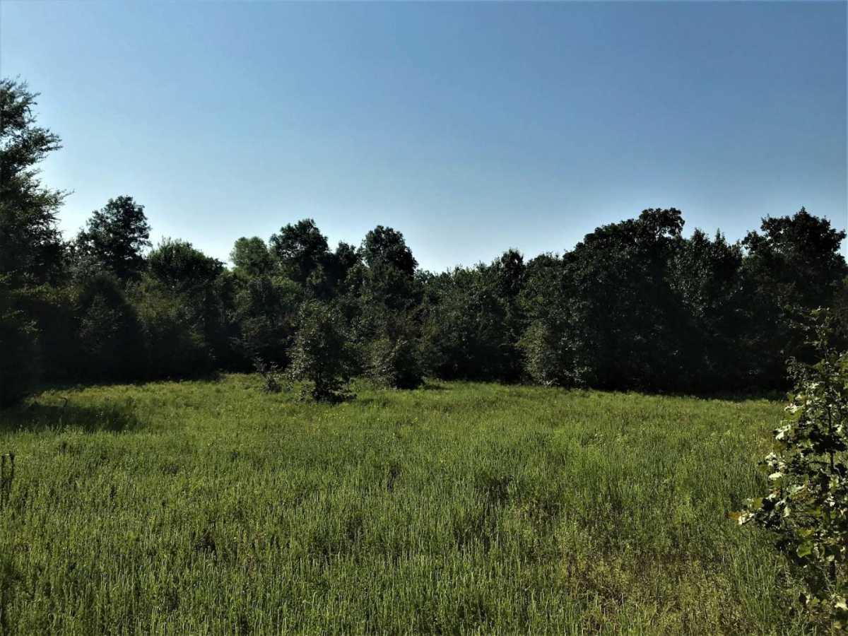 Pending | Sandy Creek Rd Coleman, OK 73432 10
