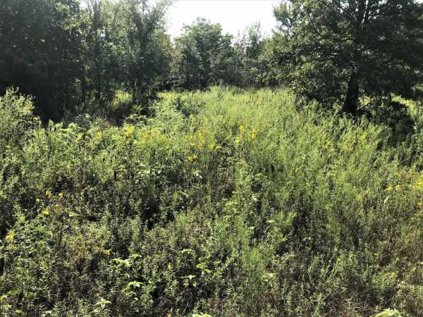 Pending   Sandy Creek Rd Coleman, OK 73432 13