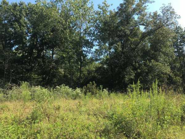 Pending   Sandy Creek Rd Coleman, OK 73432 1