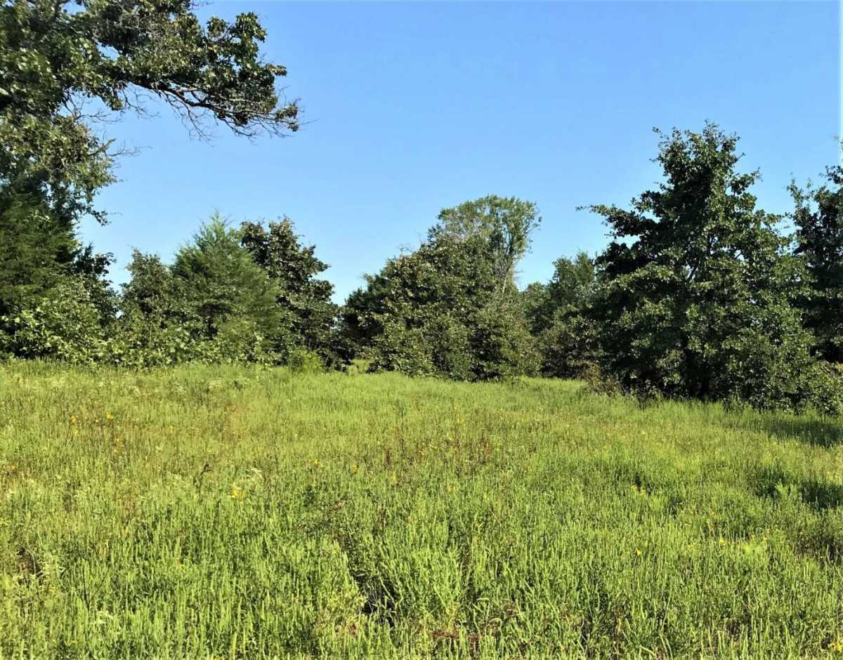 Pending | Sandy Creek Rd Coleman, OK 73432 7