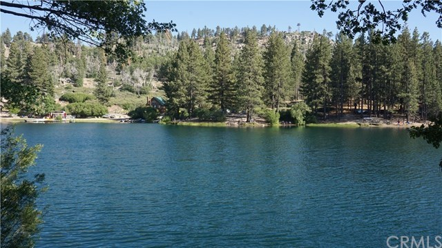 Active | 33394 Fern Drive Green Valley Lake, CA 92341 13
