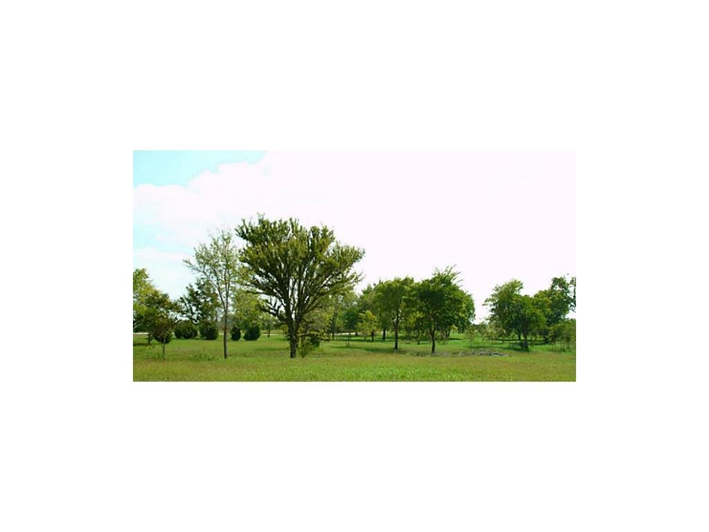 Sold Property | Lot 20 Embarcadero  Kerens, TX 75144 0
