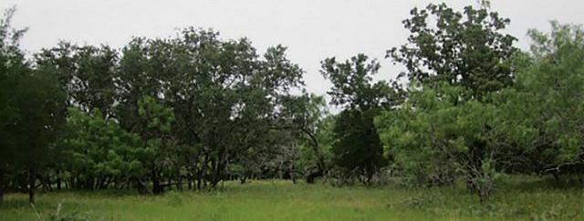 Active | -- Various Streets  Lake Brownwood, TX 76857 3