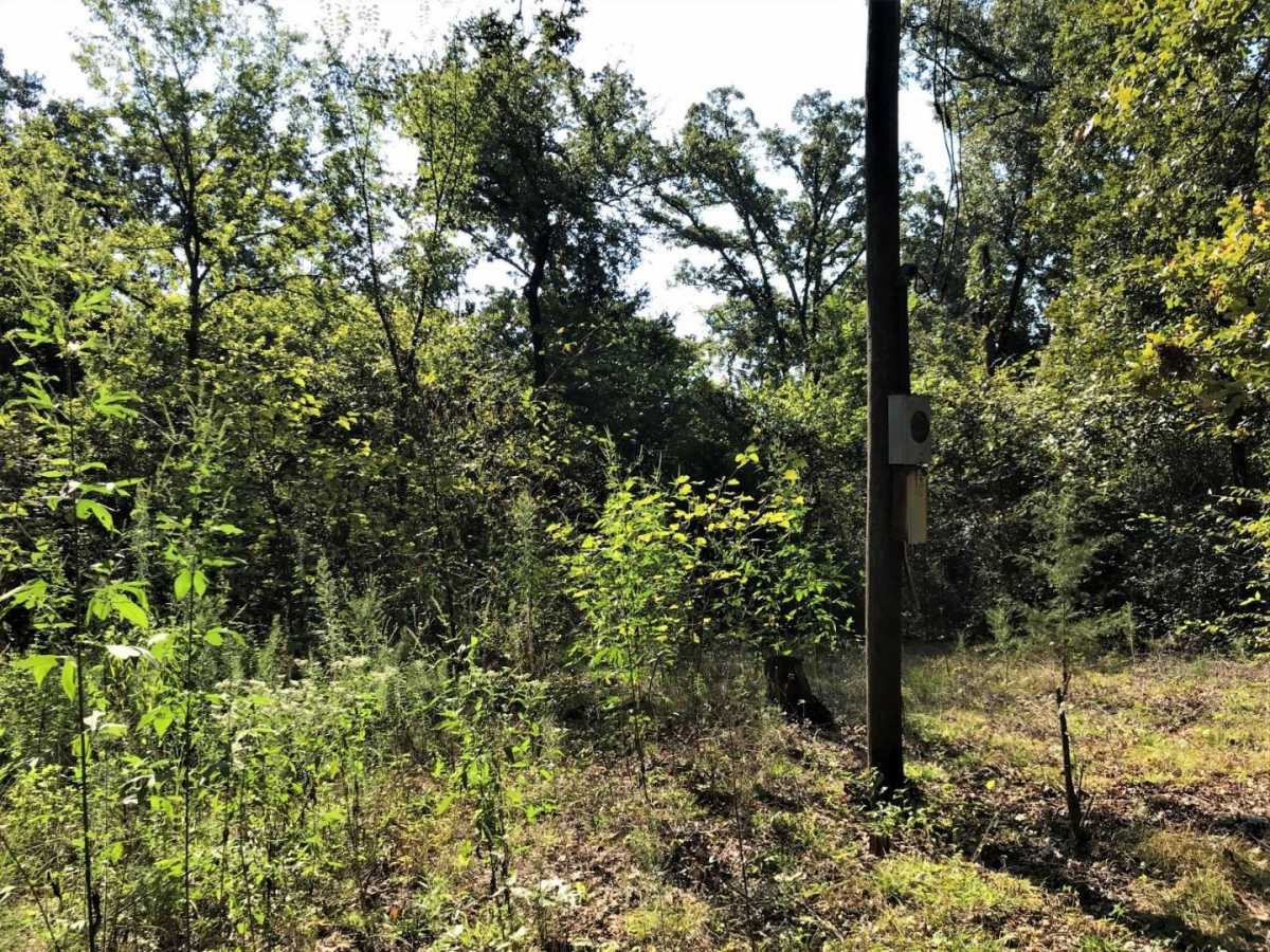 Sold Property | MUSCADINE COTTAGE Coleman, OK 73432 17