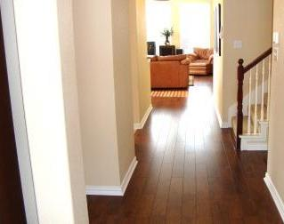 Sold Property | 2452 Dawn Mist Drive Little Elm, Texas 75068 3