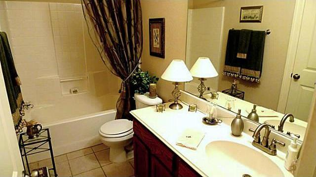 Sold Property   316 Parakeet Drive Little Elm, Texas 75068 18
