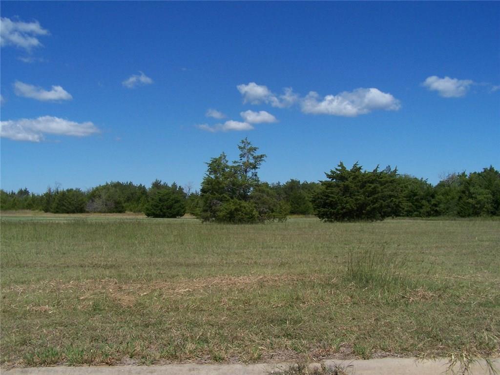 Active | 12 EAGLE CHASE Lane Pottsboro, Texas 75076 0