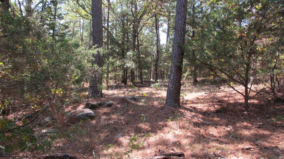 Active | 0000 D4135 Rd #7 - Kiamichi Wilderness Moyers, OK 74557 0