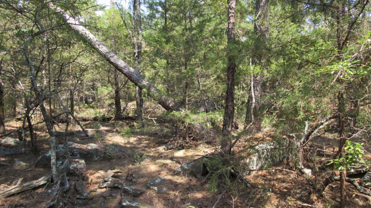 Active | 0000 D4135 Rd #7 - Kiamichi Wilderness Moyers, OK 74557 10