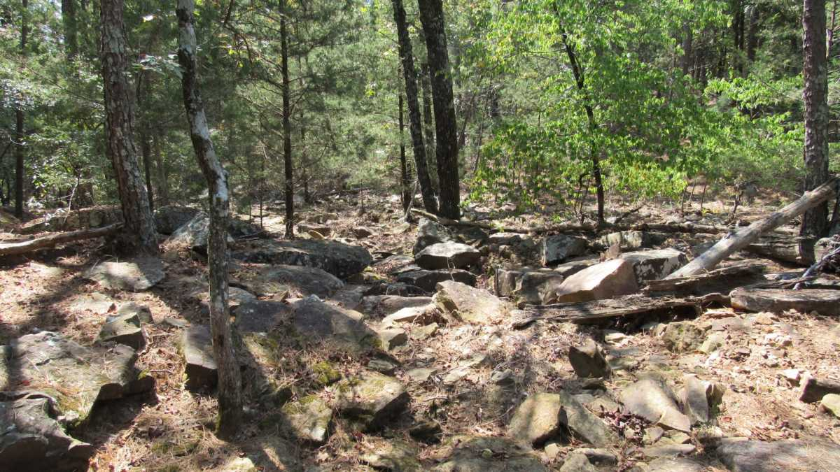 Active | 0000 D4135 Rd #7 - Kiamichi Wilderness Moyers, OK 74557 12