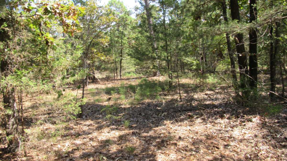 Active | 0000 D4135 Rd #7 - Kiamichi Wilderness Moyers, OK 74557 15