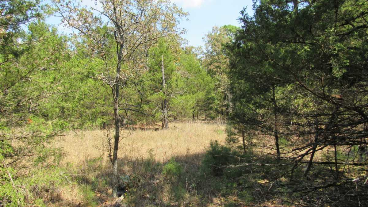 Active | 0000 D4135 Rd #7 - Kiamichi Wilderness Moyers, OK 74557 18