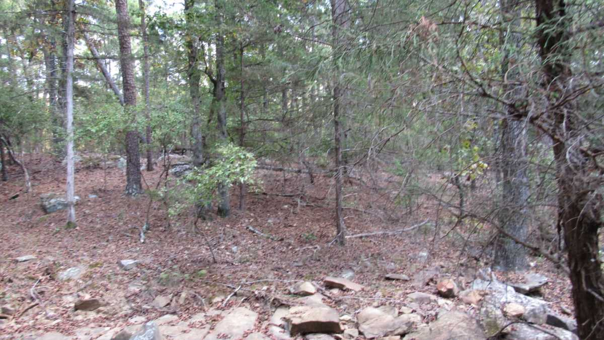 Active | 0000 D4135 Rd #7 - Kiamichi Wilderness Moyers, OK 74557 26