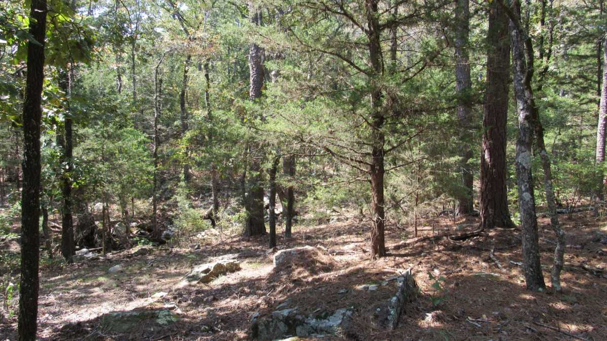 Active | 0000 D4135 Rd #7 - Kiamichi Wilderness Moyers, OK 74557 28