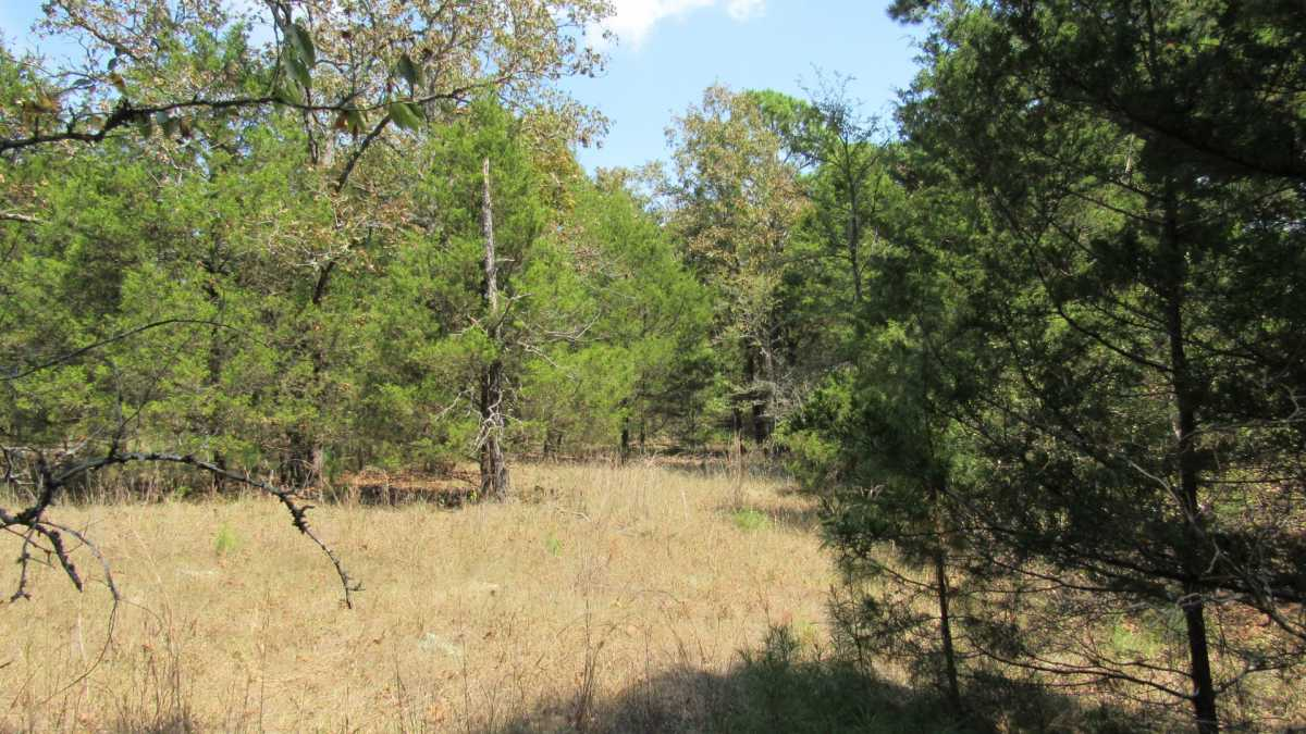 Active | 0000 D4135 Rd #7 - Kiamichi Wilderness Moyers, OK 74557 33