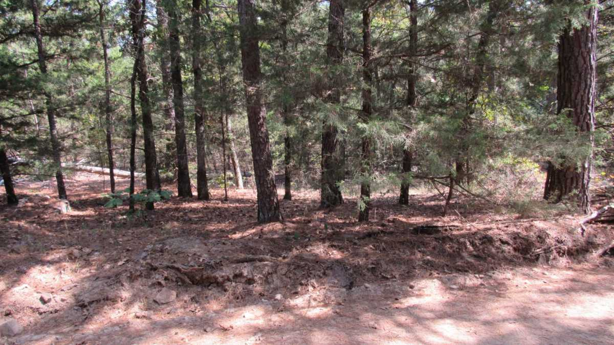 Active | 0000 D4135 Rd #7 - Kiamichi Wilderness Moyers, OK 74557 4