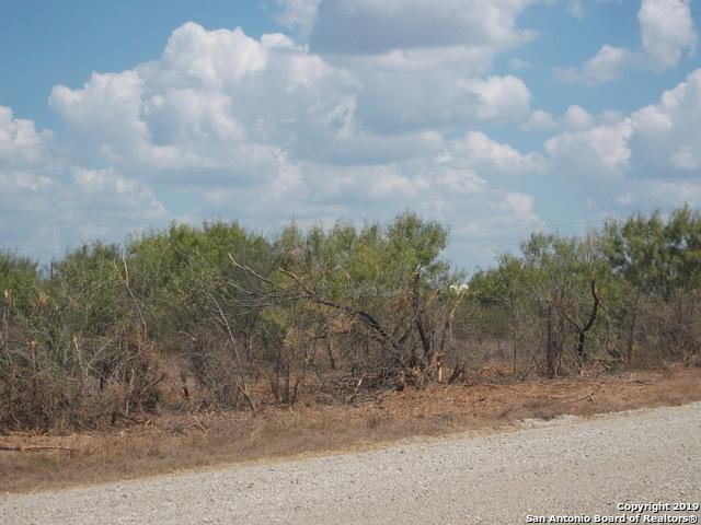 Active | 1660 county road 300  Jourdanton, TX 78026 12