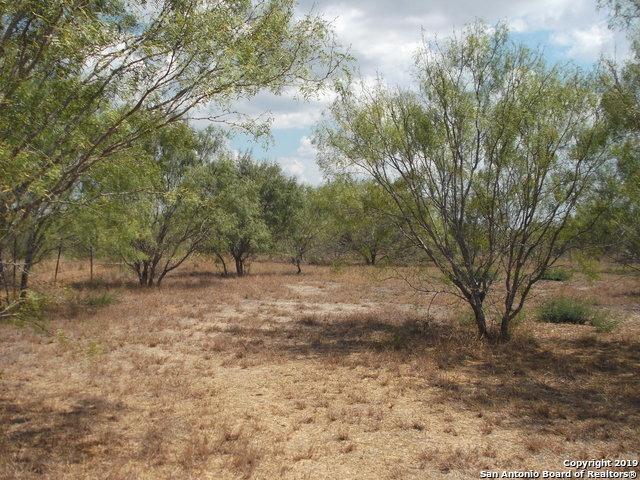 Active | 1660 county road 300  Jourdanton, TX 78026 21