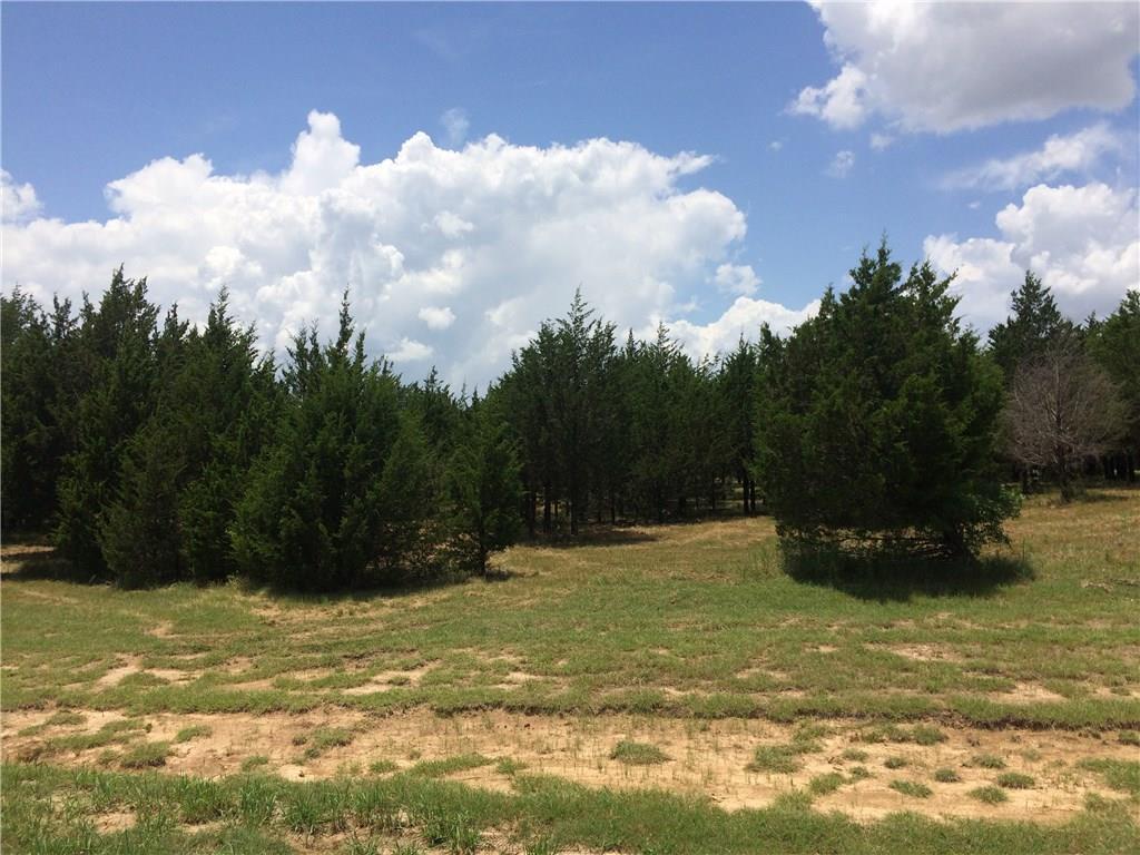 Sold Property | 209 Guy Lane Pottsboro, TX 75076 0