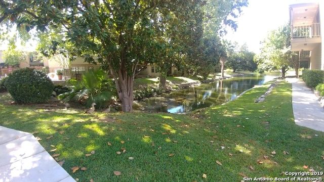 Property for Rent | 7711 Callaghan Rd  San Antonio, TX 78229 3
