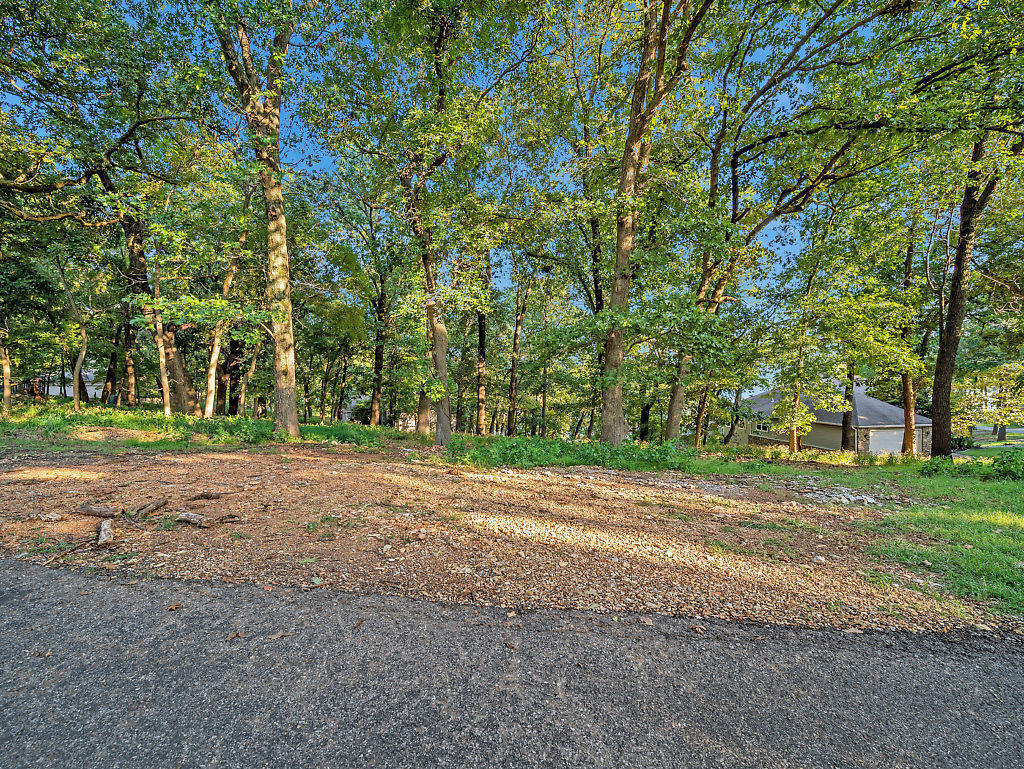 Off Market |  S Lot 42 Block 1 Coves  Afton, OK 74331 5