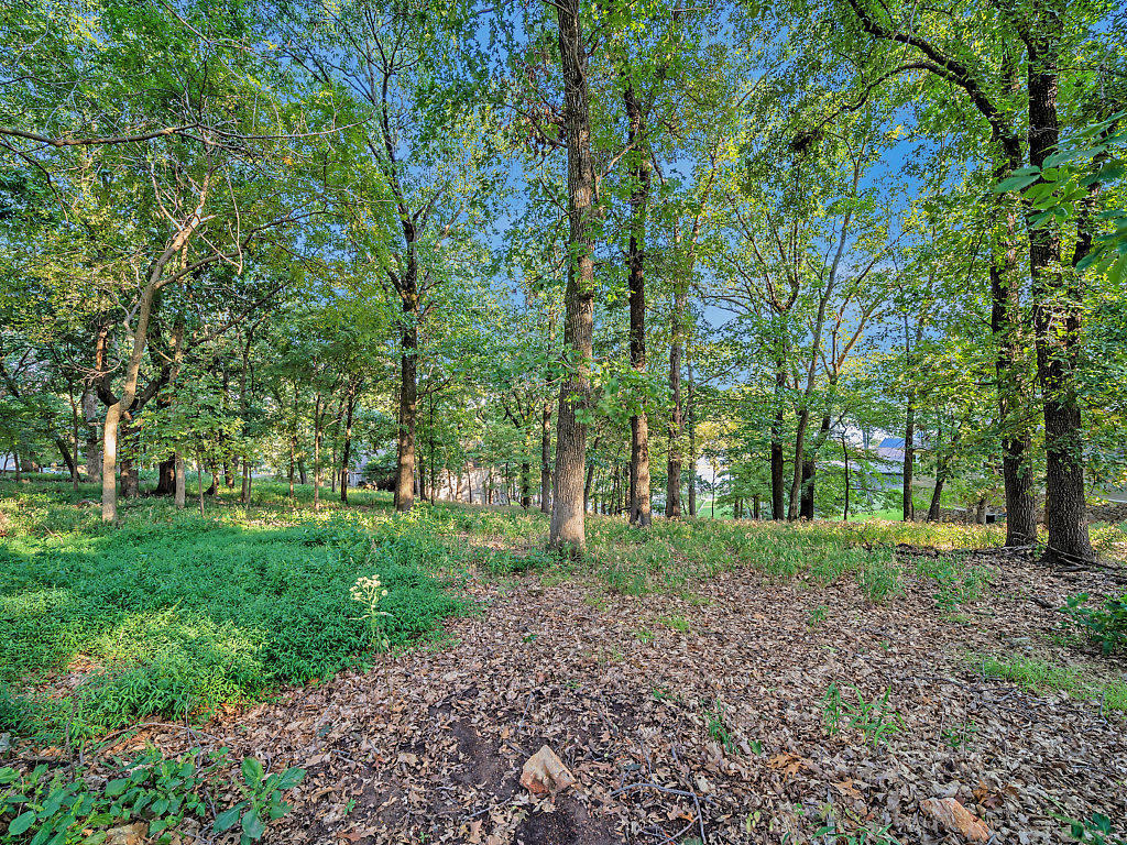 Off Market |  S Lot 42 Block 1 Coves  Afton, OK 74331 6