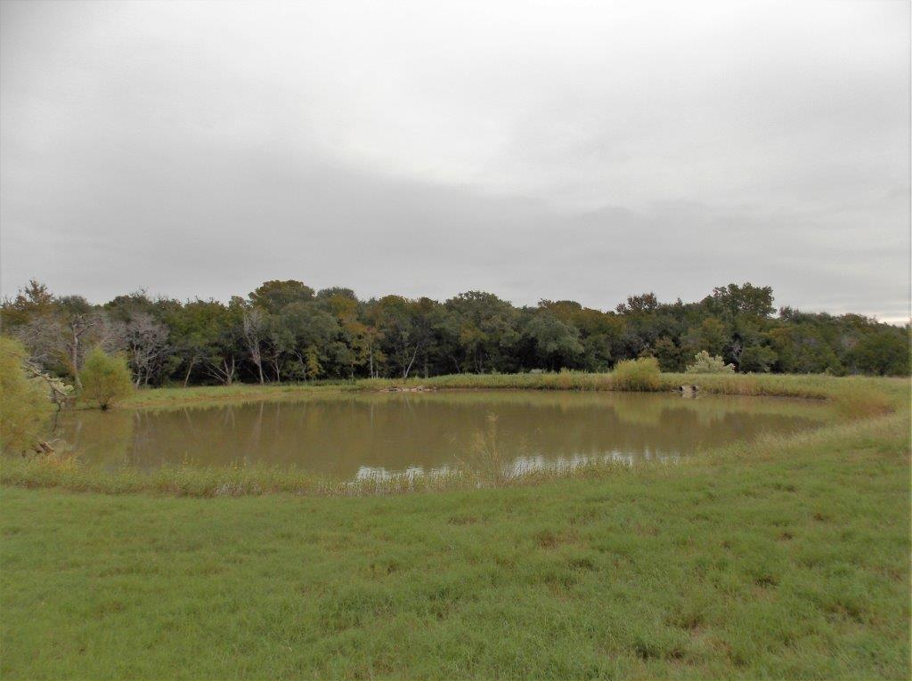 Sold Property | 9207 Wolf Hollow Court Granbury, Texas 76048 10
