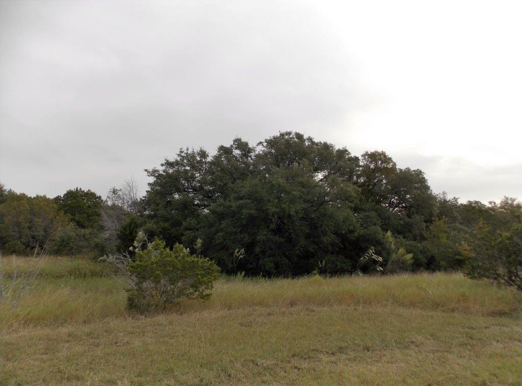 Sold Property | 9207 Wolf Hollow Court Granbury, Texas 76048 12