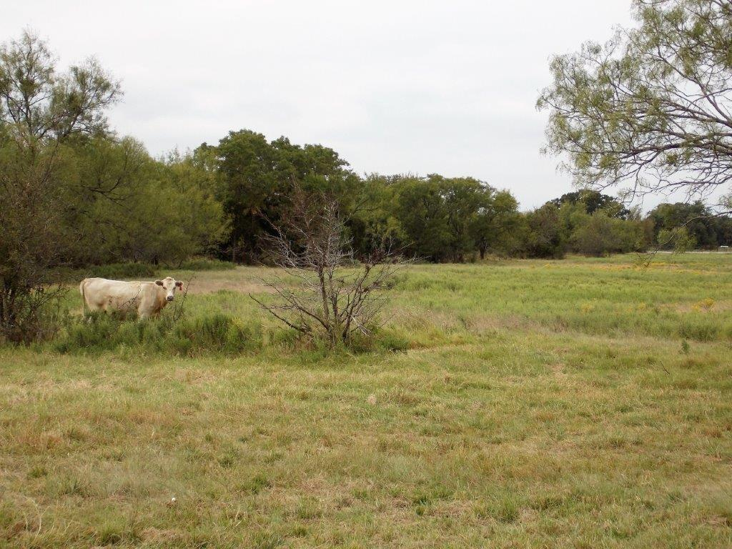 Sold Property | 9207 Wolf Hollow Court Granbury, Texas 76048 30