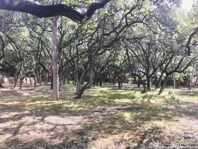 Active | 243 Fox Hall Ln Castle Hills, TX 78213 11