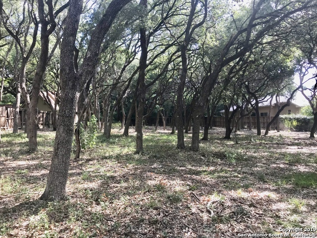 Active | 243 Fox Hall Ln Castle Hills, TX 78213 13