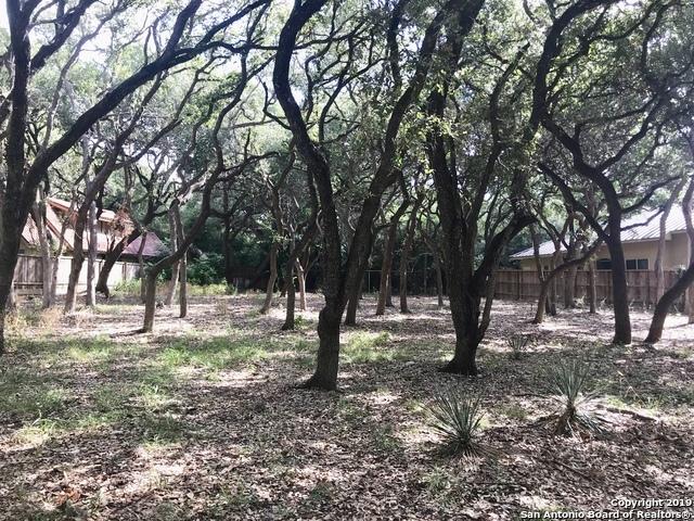 Active | 243 Fox Hall Ln Castle Hills, TX 78213 14
