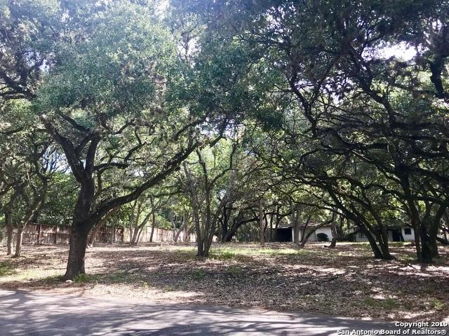 Active | 243 Fox Hall Ln Castle Hills, TX 78213 4