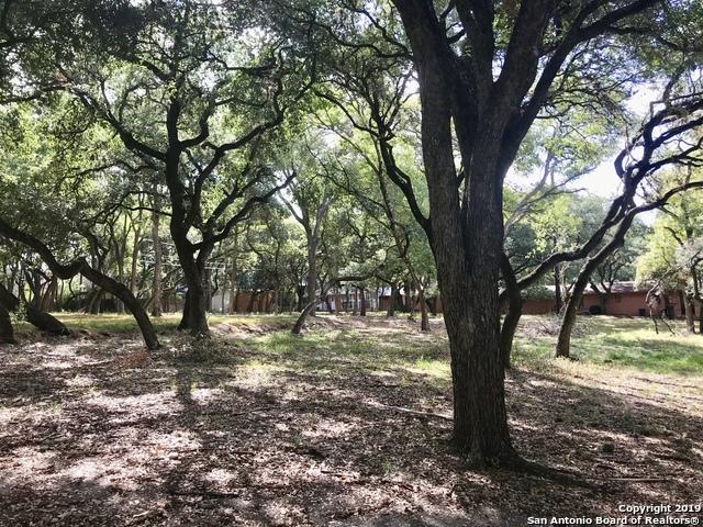 Active | 243 Fox Hall Ln Castle Hills, TX 78213 9