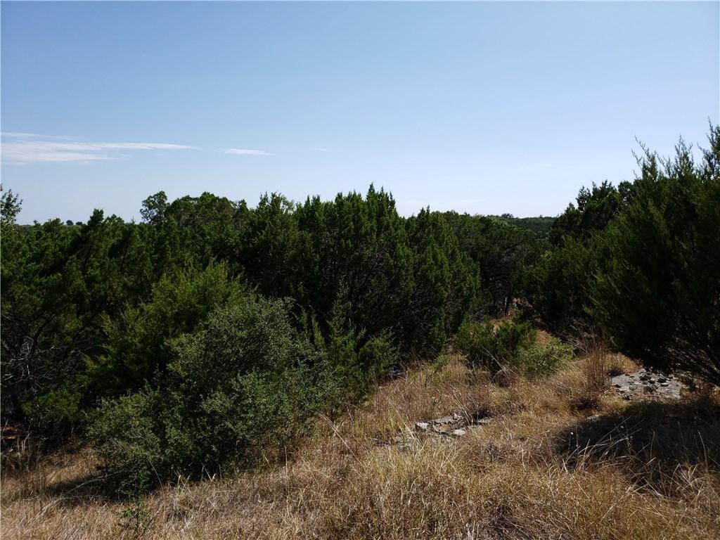 Active | 00 Balcones Ridge WAY Bertram, TX 78605 3