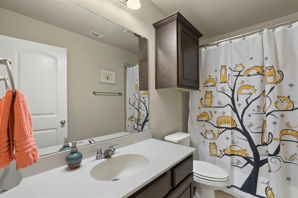 Sold Property | 2532 Scotti  Street Lewisville, TX 75056 23