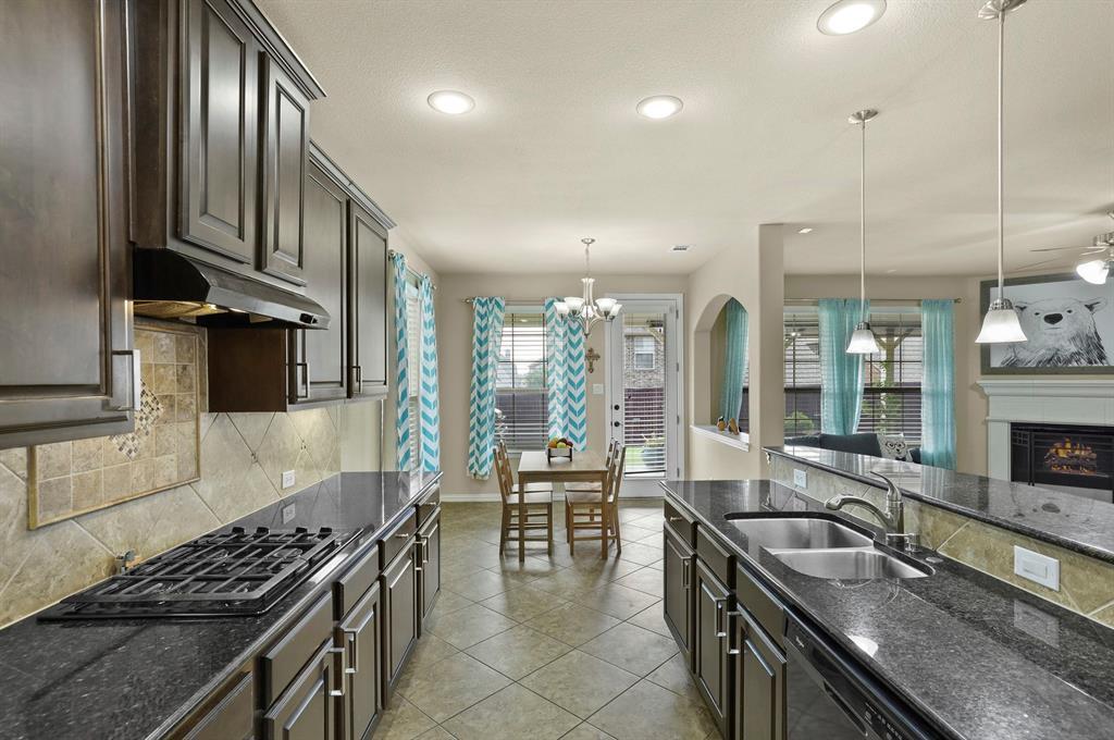 Sold Property | 2532 Scotti  Street Lewisville, TX 75056 7