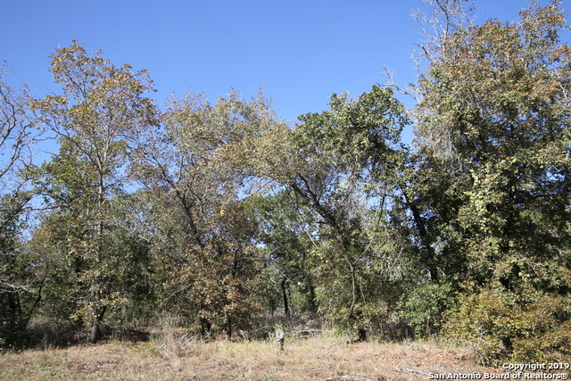 Active | LOT 7 Clear Lake Dr Poteet, TX 78065 2