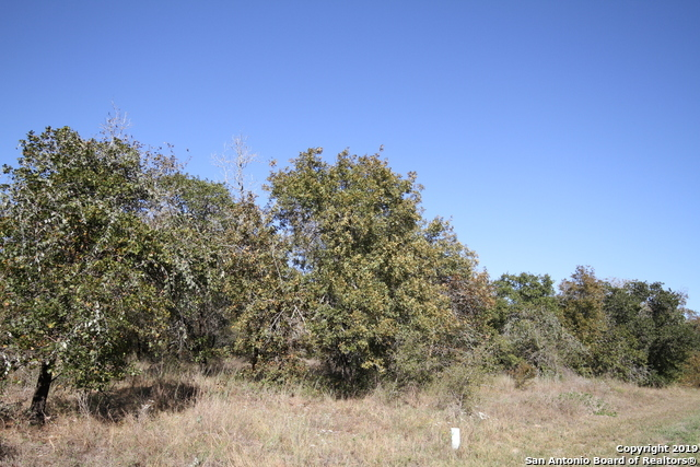 Active | LOT 7 Clear Lake Dr Poteet, TX 78065 3