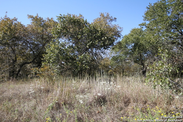 Active | LOT 7 Clear Lake Dr Poteet, TX 78065 4