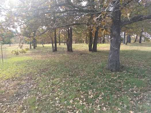 Sold Property | 14165 SE 136th Rd Wister, OK 74966 5