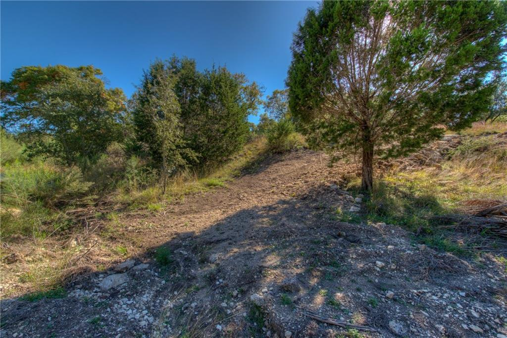 Sold Property   232 Silver Spur Drive Dripping Springs, TX 78620 8