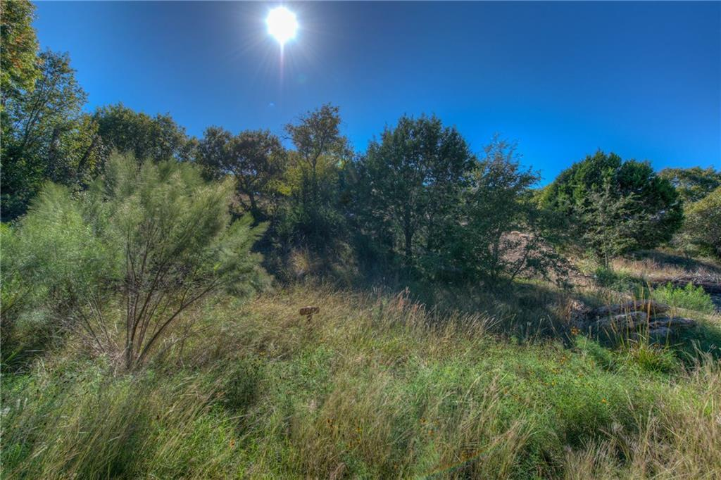 Sold Property | Lot 30 $ 31 Silver Spur Dr Drive Dripping Springs, TX 78620 0