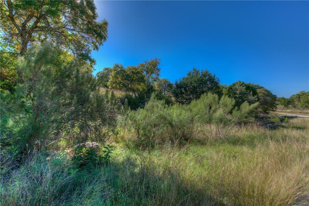 Sold Property | Lot 30 $ 31 Silver Spur Dr Drive Dripping Springs, TX 78620 1