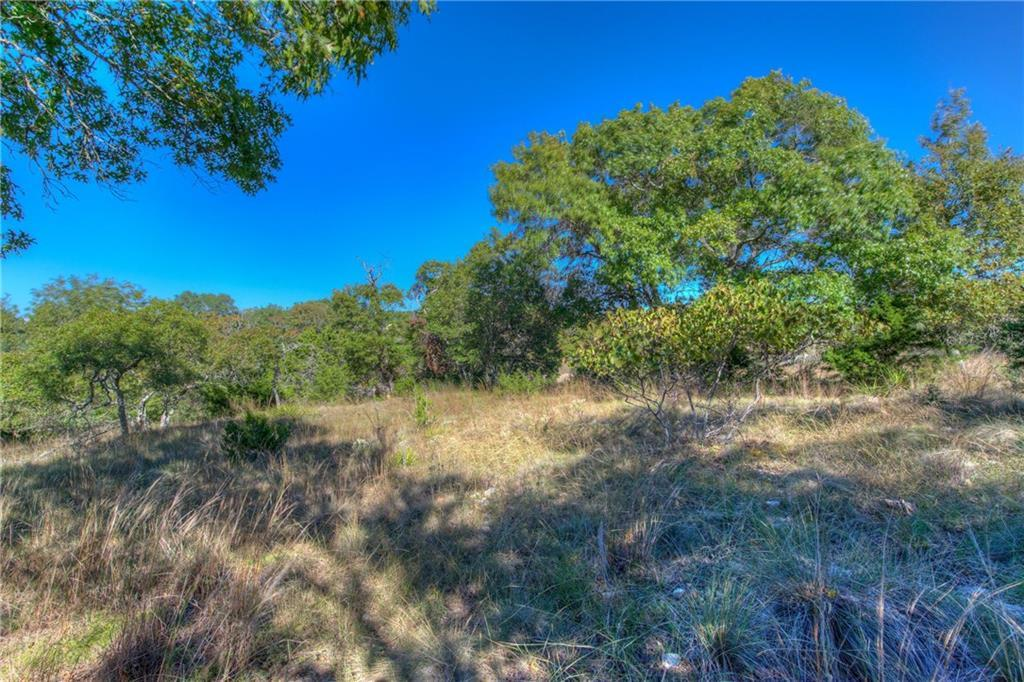 Sold Property | Lot 30 $ 31 Silver Spur Dr Drive Dripping Springs, TX 78620 12