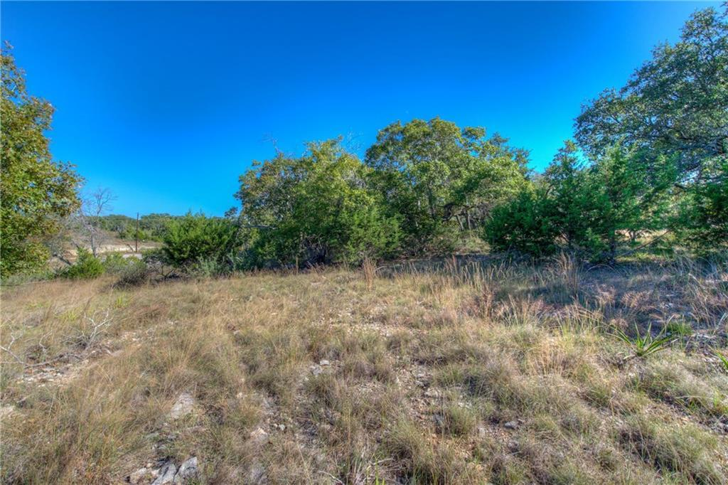Sold Property | Lot 30 $ 31 Silver Spur Dr Drive Dripping Springs, TX 78620 13