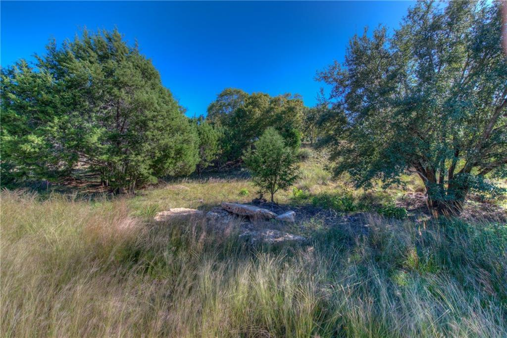 Sold Property | Lot 30 $ 31 Silver Spur Dr Drive Dripping Springs, TX 78620 3